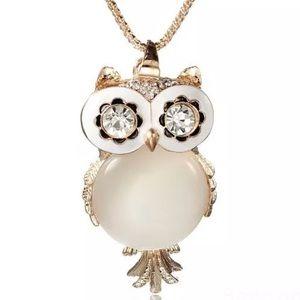 Jewelry - 💣💣💣Rhinestone Owl Pendant NWT